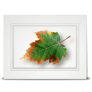 Maple Leaf, Autumn Edge - folded card
