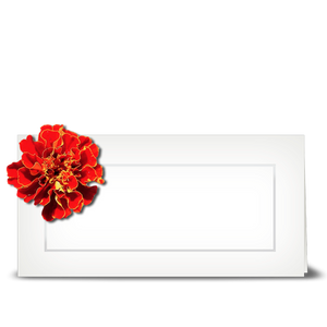 Marigold Mum - place card
