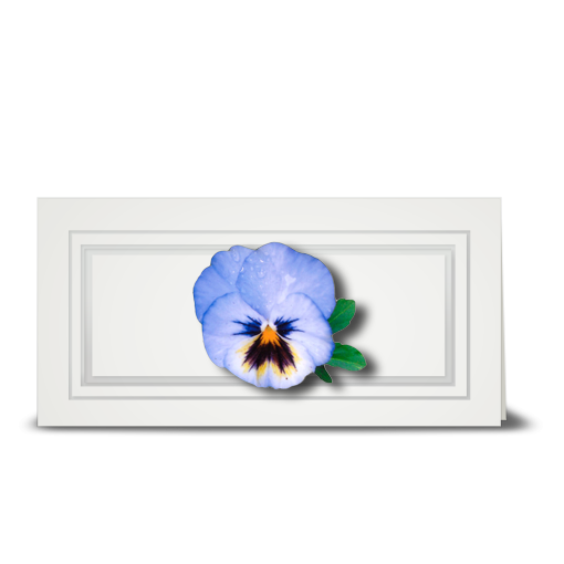 Pansy, light blue - gift tag