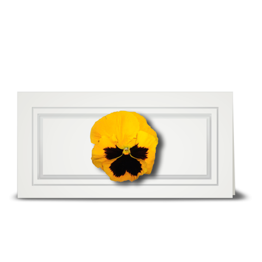 Pansy, yellow - gift tag