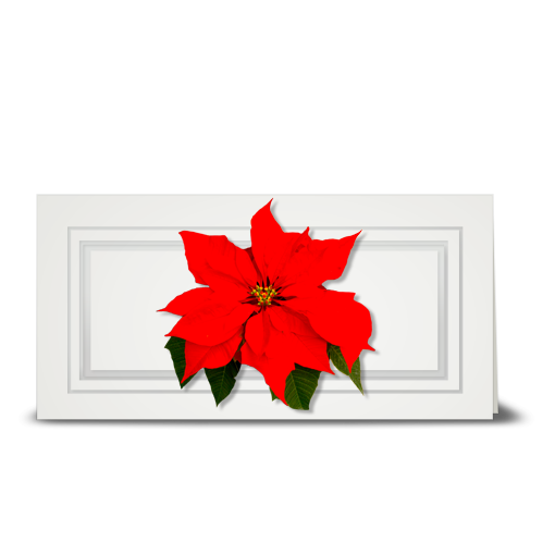 Poinsettia, red - gift tag
