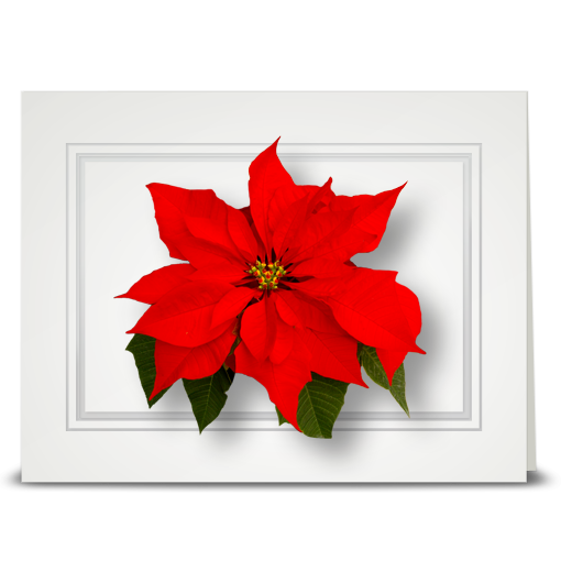 Poinsettia, Red - folded card