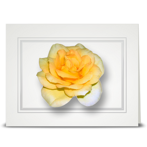 Rose, Gwynn's - folded card