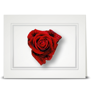 Rose, red heart - folded card