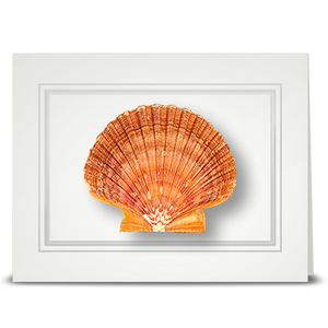 Brown Scallop - folded card