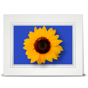Sunflower, block isle - folded card
