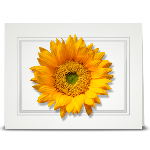 Sunflower, Bright - folded card