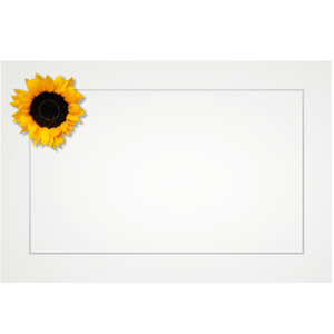 Sunflower, double petal - flat cards (box of 10)