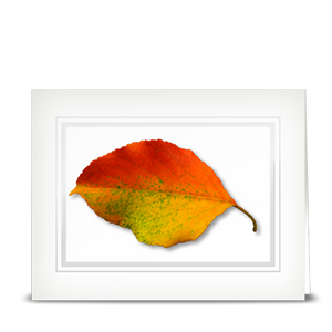 Survivor Leaf - folded card