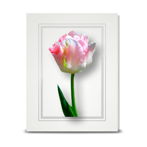 Tulip, Spring - folded card