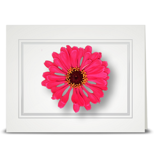 Zinnia, pink - folded card