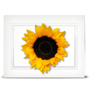 Sunflower, double petal - folded card