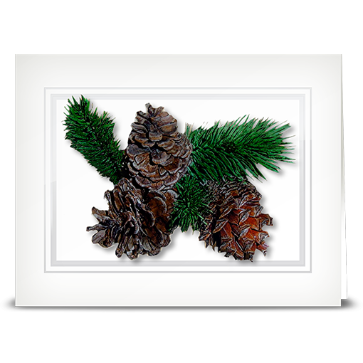 Pinecone - folded card