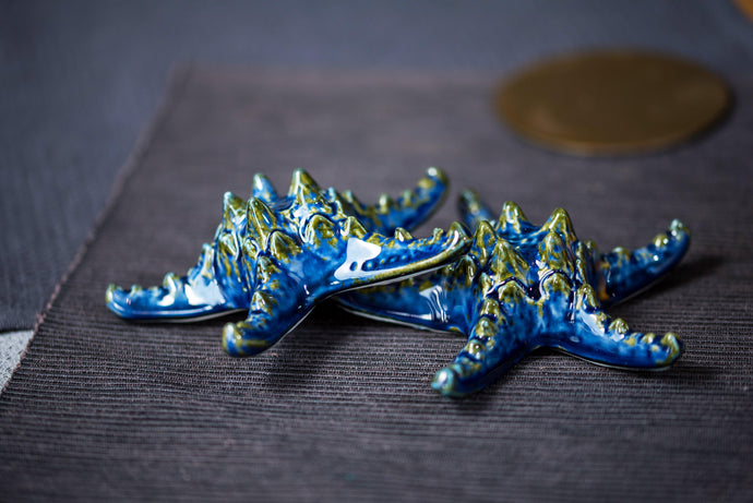 Porcelain starfish in blue - ZLATNAporcelain