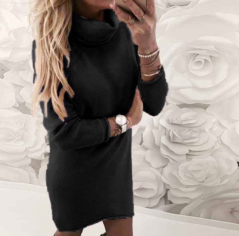 Turtleneck Long-sleeve Casual Knit Dress