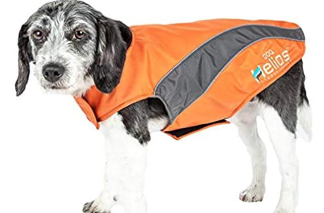 Dog Padded Waterproof Coat in Orange and Grey - XL