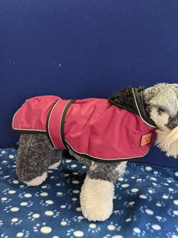 Dog Coat - Ginger Ted Shower Greyhound Coat, Cherry Red, 18 inches