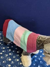 Load image into Gallery viewer, Dog Jumper - Multi-colour Strip Jumper, 18 Inches