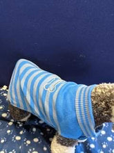 Load image into Gallery viewer, Dog Jumper - Royal blue with Grey Stripes and Bone Design, 17 Inches