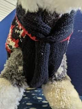 Load image into Gallery viewer, Dog Jumper - Knitted black/white/red with Polo neck, 17 inches