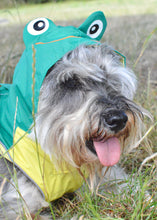 Load image into Gallery viewer, Dog Raincoat in Green and Yellow by Pooch Couture - Small & Medium