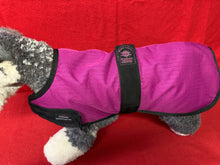 Load image into Gallery viewer, Dog Coat - Waterproof, Windproof Outhwaite Coat in Purple 18""