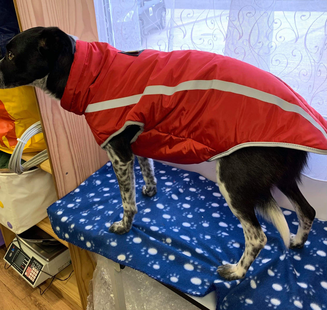 Dog Coat - Bright Red Zip up with Reflective Grey Strip. 5XL 24 Inches