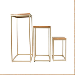Rustic Teak and Gold Set of Three Stacking Plantstands