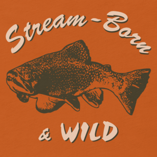 Fly fishing t shirt design with brook trout and text.