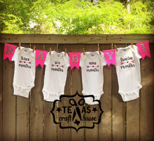 Load image into Gallery viewer, Custom Baby Shower Onesie Banner Kit