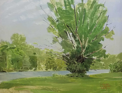 Title: A Tree In Pinhook Artist: Alan Larkin Medium: Oil  Size: Framed