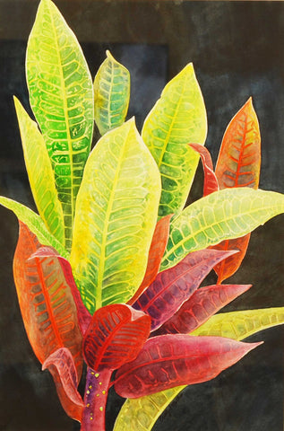 Painting: Tropical Gems Artist: Beverly S. Mathis Medium: Watercolor