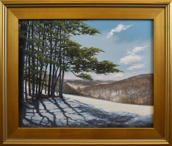 "Title: Evergreen Brown County Artist: Sharon Steiner Medium: Oil  Size: 25"" x 21"", framed"