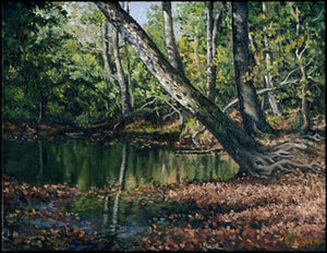 "Title: Fall On Leatherwood Artist: Barry Powell Medium: Oils  Size: 11"" x 14"", framed"