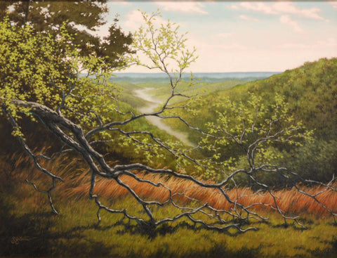 Title: After The Storm - Brown County Artist: Sharon Steiner Medium: Oil  Size: Framed