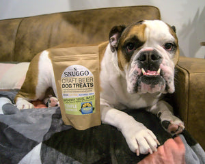 @Ethyl_TheBritishBulldog with Snuggo Okinawa Sour Dog Treats
