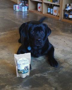 Maggie with Snuggo Anytime Malt Spent Grain Dog Treats