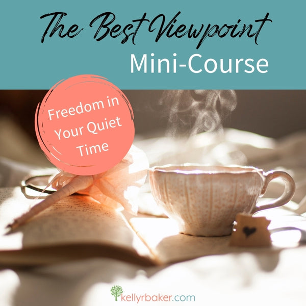 Best Viewpoint Mini-Course (5 Video Tutorials + Course Materials)