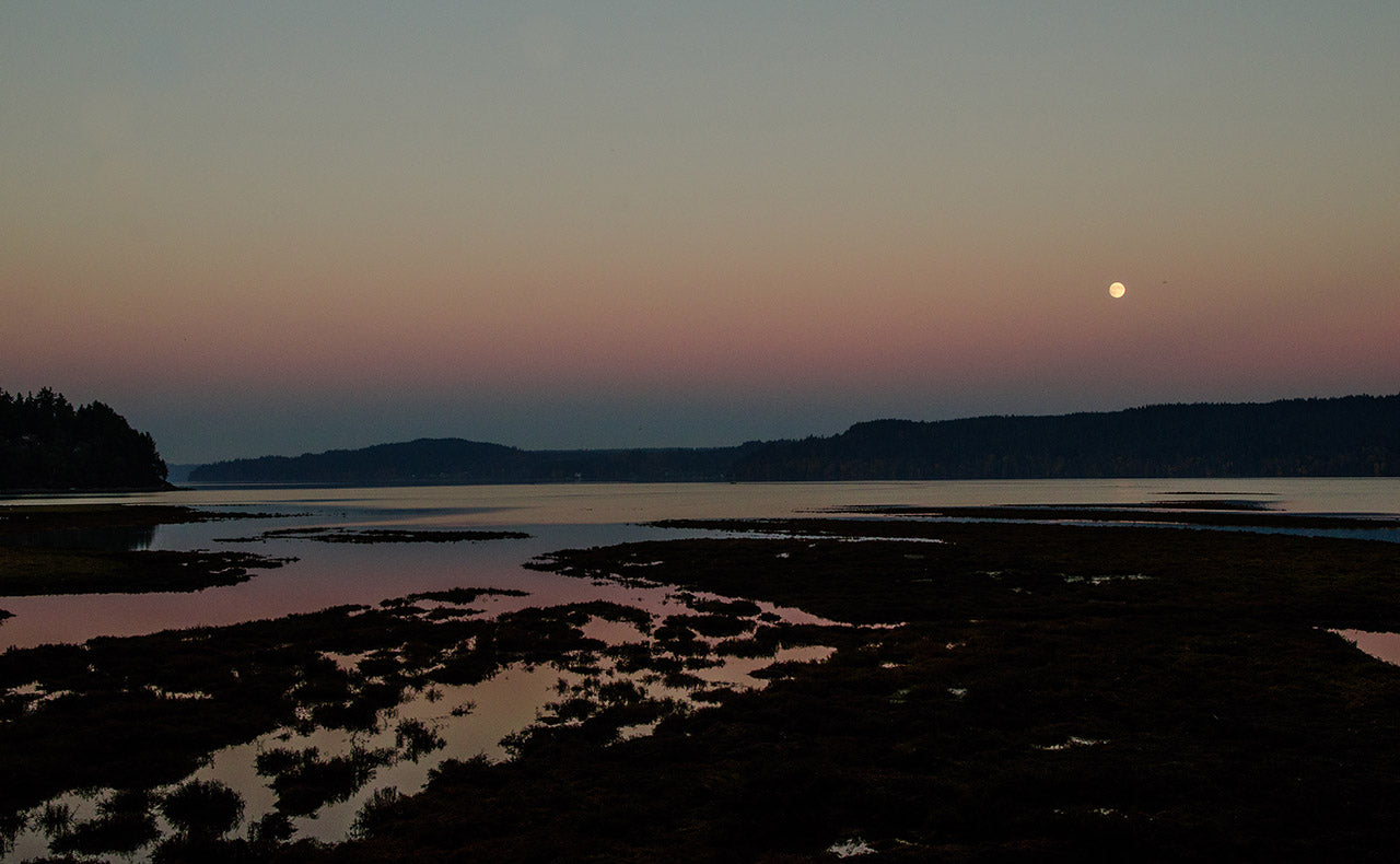 Full Moon over the Oyster Farm, photo by Jeff Scott Shaw