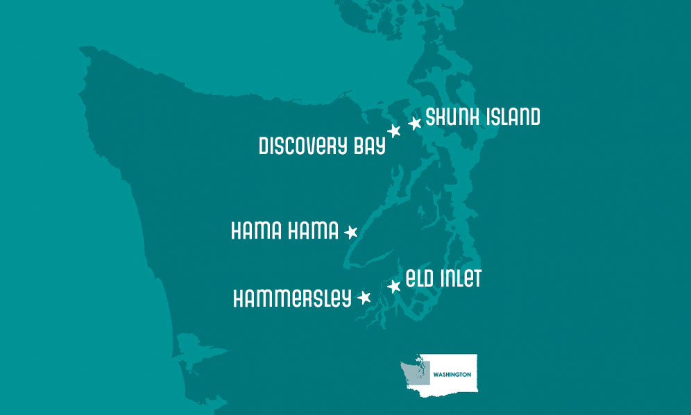 map of Hama Hama's oyster growing regions