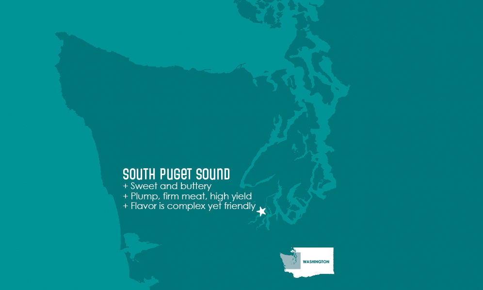 South Puget Sound Oyster Map