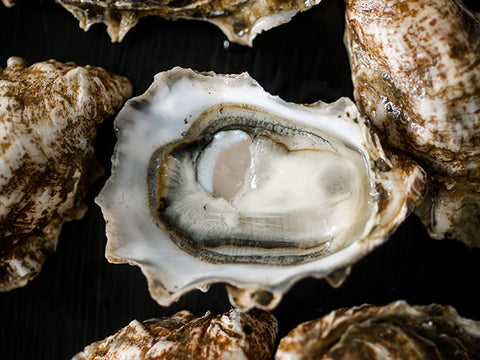 Eld Inlet Oysters