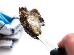 2017 Oyster Classes