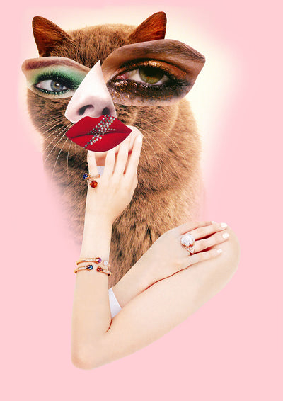 HOLLYWOOD HOUSECAT | FINE ART PRINT