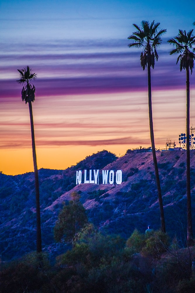 Hollywood sign between the palms at sunset
