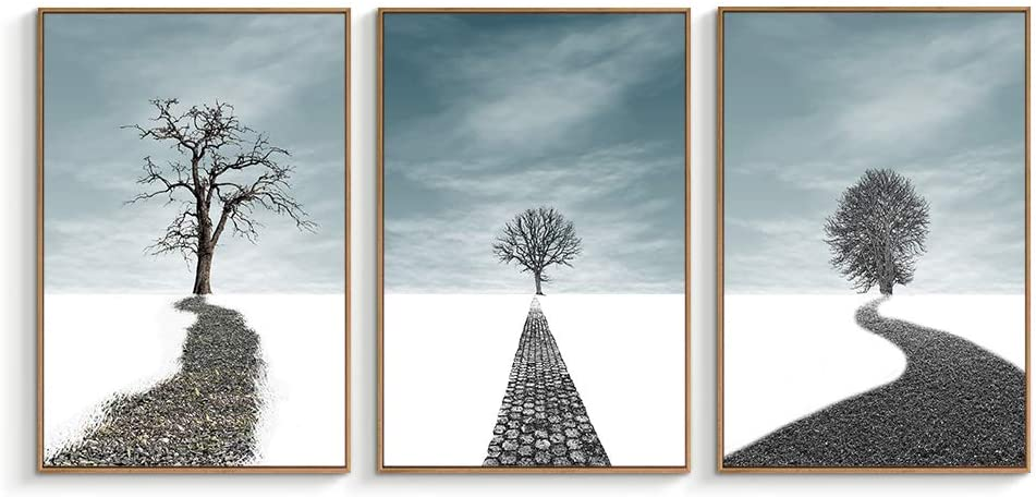 "Classier: Buy NWT NWT Framed Canvas Wall Art for Living Room, Bedroom Canvas Prints for Home Decoration Ready to Hanging - 16""x24""x3 Panels"