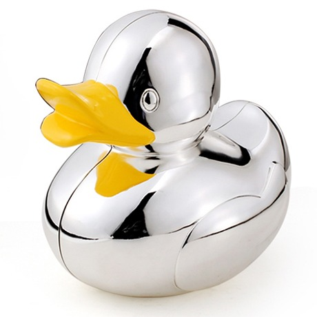 Money Box Duck