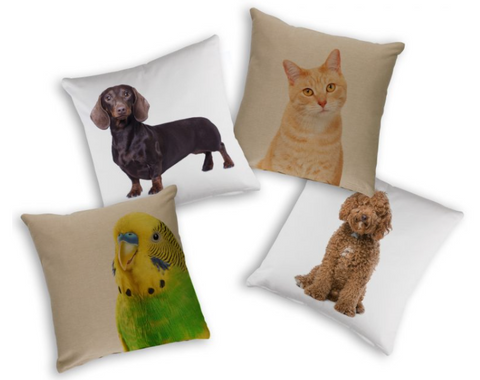 Animals Pet Cushion Cover