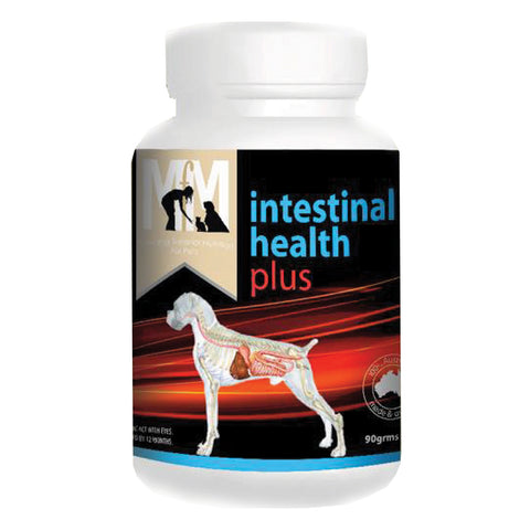 Intestinal Health Plus Probiotic For Dogs