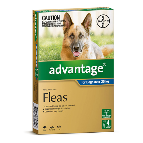 Advantage Flea Treatment for Dogs